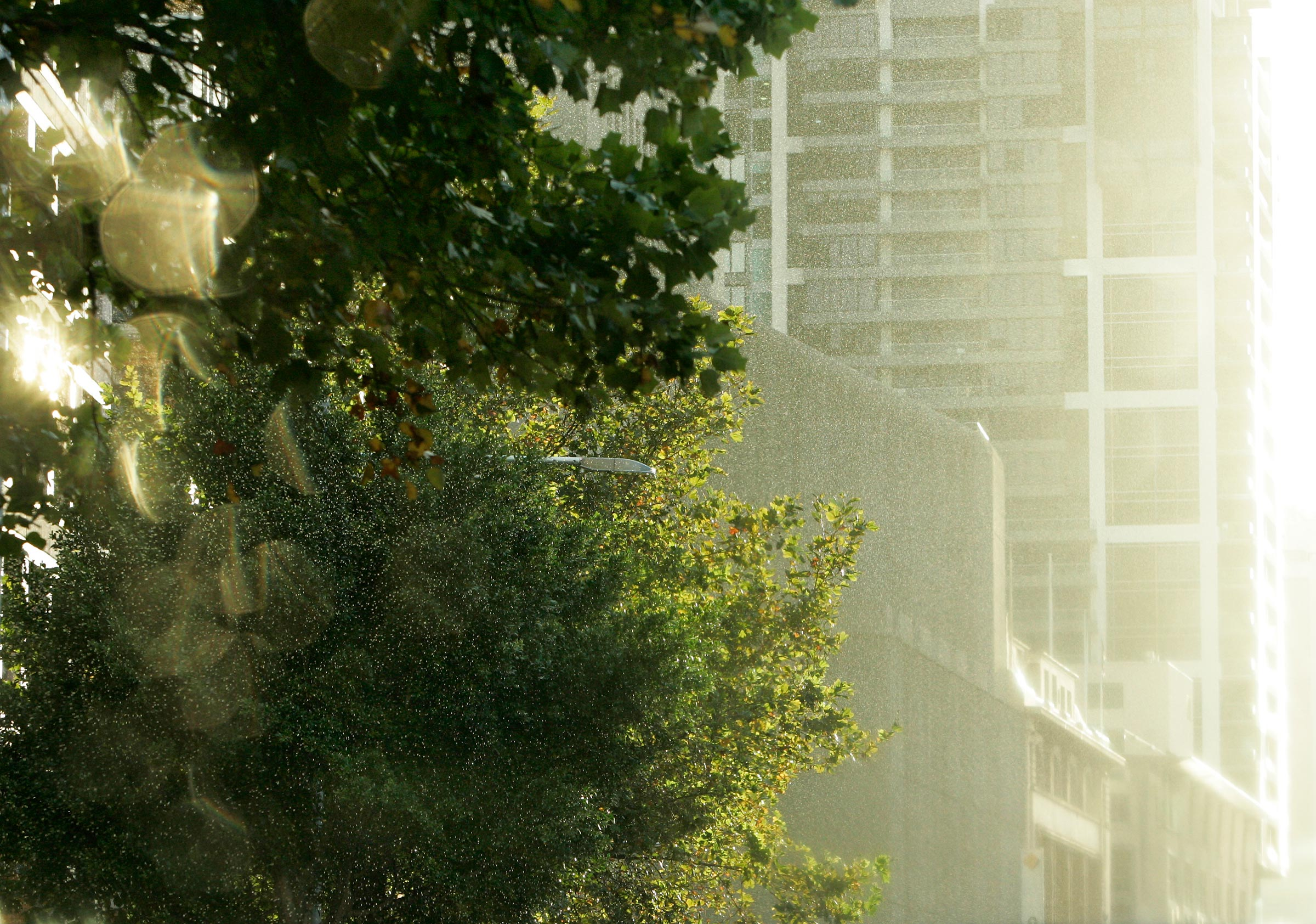 sun shower in the city
